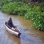 pescatore di granchi nel Delta del Parnaiba Brasile