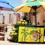 noci di cocco in vendita sulla Beira Mar di Fortaleza