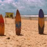 tavole da surf in una spiaggia brasiliana del nordest