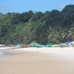 la bellissima spiaggia di Praia do Madeiro a Pipa in Brasile