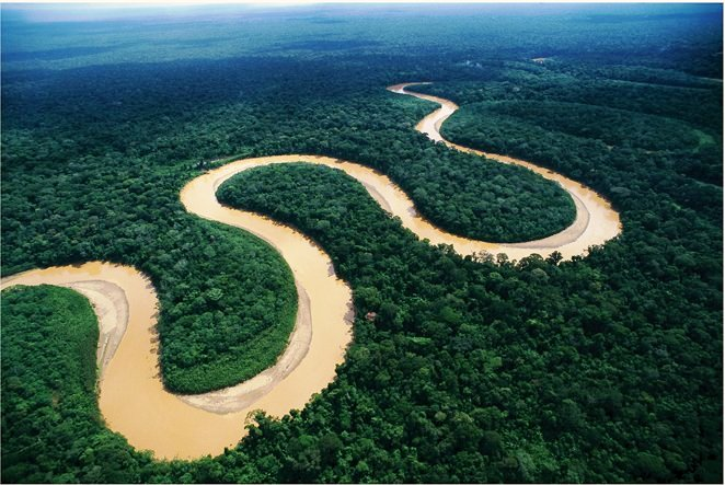 l'Amazzonia vista dall'alto