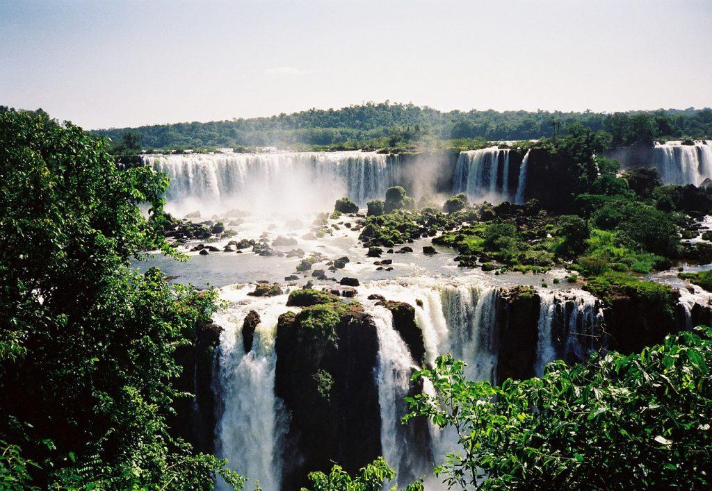 tour Brasile cacate Iguazu