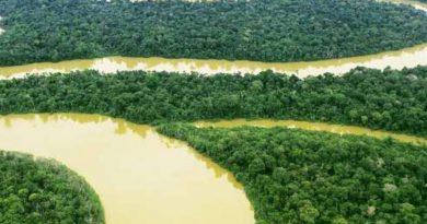 viaggio Amazzonia offerte