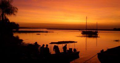 Brasile Pantanal come e dove